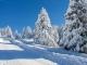 小学作文指导:冬天作文的写法指导